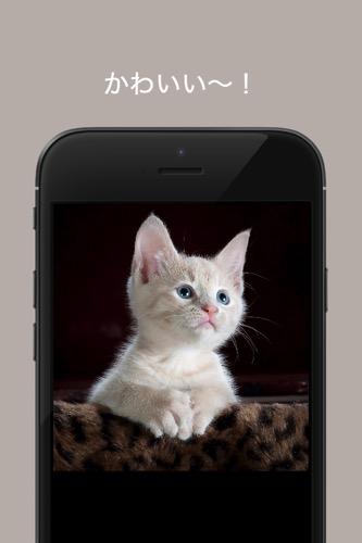IPhone 4 Screenshot
